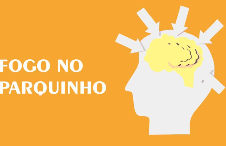 Fogo no parquinho: política para o cérebro que virou purê
