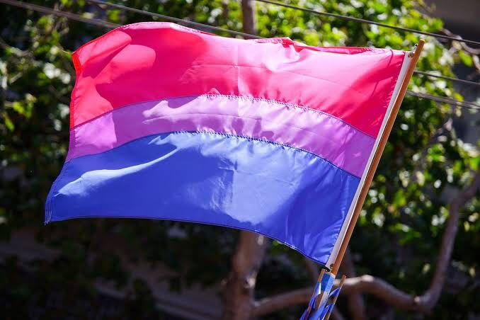 Visibilidade Bissexual e Prevenção ao Suicídio: duas pautas de Setembro